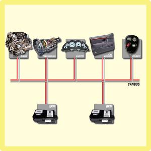 Universal CANBUS Adaptors